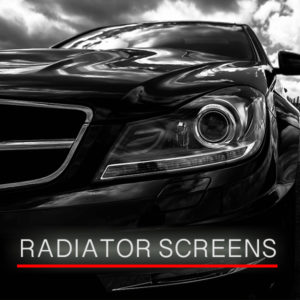 Radiator Screens